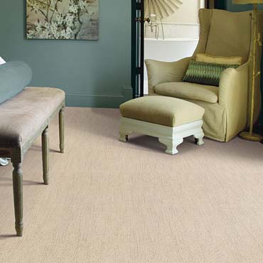 Caress Carpet by Shaw | Newberry, SC